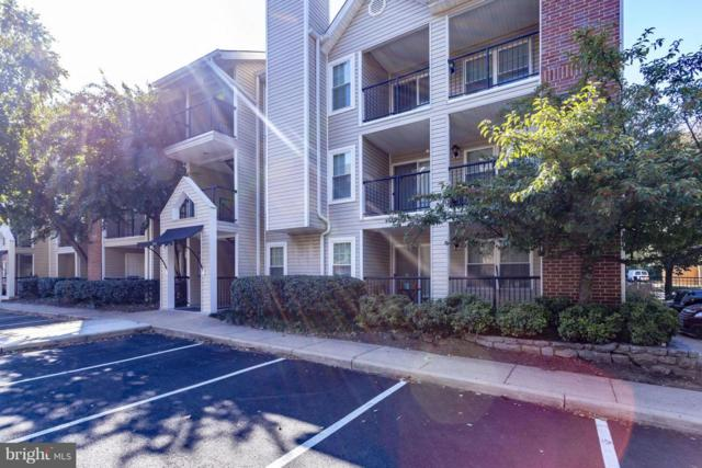 3312 Wyndham Circle #303, ALEXANDRIA, VA 22302 (#1009997816) :: Charis Realty Group