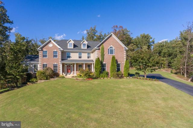 155 Sentinel Ridge Lane, STAFFORD, VA 22554 (#1010003004) :: Colgan Real Estate