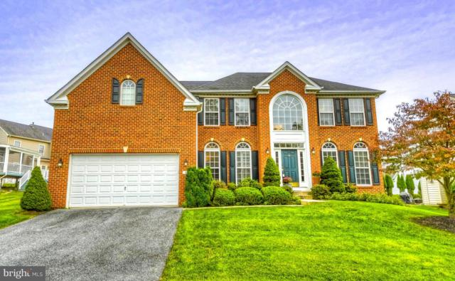 815 Queens Park Drive, OWINGS MILLS, MD 21117 (#1010003058) :: Great Falls Great Homes