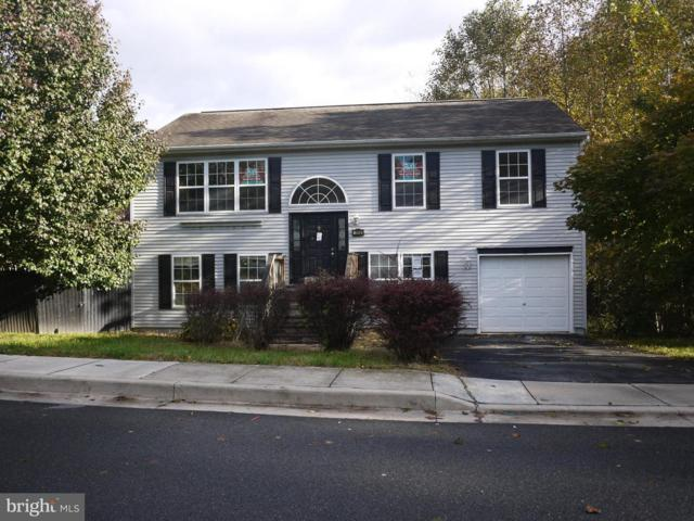 19 North Court, NORTH EAST, MD 21901 (#1010003232) :: Great Falls Great Homes