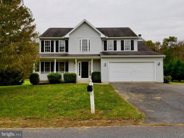234 Viceroy Drive, FALLING WATERS, WV 25419 (#1010008308) :: The Gus Anthony Team