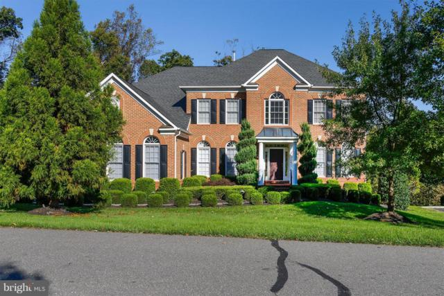 40740 Black Gold Place, LEESBURG, VA 20176 (#1010010332) :: The Gus Anthony Team