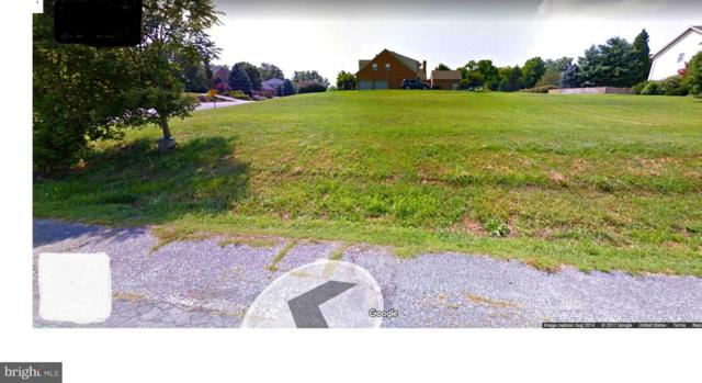 11100 Mahogany Drive, HAGERSTOWN, MD 21742 (#1010011836) :: Colgan Real Estate