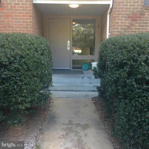 1 Windblown Court #203, BALTIMORE, MD 21209 (#MDBC100184) :: Keller Williams Pat Hiban Real Estate Group