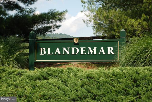 Blandemar Drive, CHARLOTTESVILLE, VA 22903 (#VAAB100004) :: ExecuHome Realty