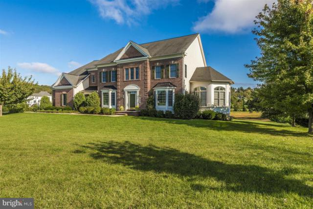 6811 Southridge Way, MIDDLETOWN, MD 21769 (#MDFR100102) :: Great Falls Great Homes