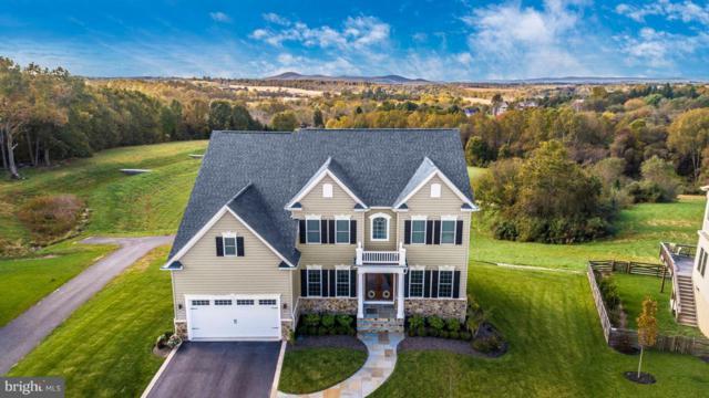 3432 Winmoor Drive, IJAMSVILLE, MD 21754 (#MDFR100110) :: Jim Bass Group of Real Estate Teams, LLC