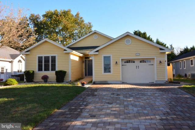 181 Lakeside Drive, LEWES, DE 19958 (#DESU101470) :: The Windrow Group