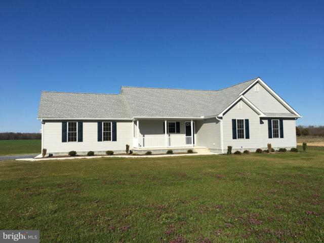 8439 Greenwood Road, HARRINGTON, DE 19952 (#DEKT100878) :: REMAX Horizons