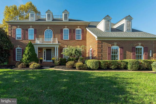 14441 Chamberry Circle, HAYMARKET, VA 20169 (#VAPW100192) :: The Gus Anthony Team