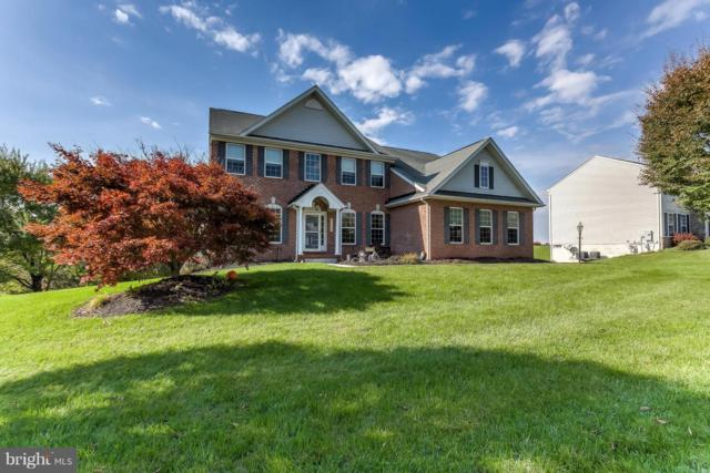 20021 Meadowsweet Lane, GLEN ROCK, PA 17327 (#PAYK100270) :: Benchmark Real Estate Team of KW Keystone Realty