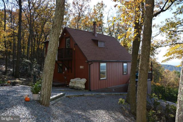 555 Wild Boar Road, AUGUSTA, WV 26704 (#WVHS100008) :: TVRG Homes
