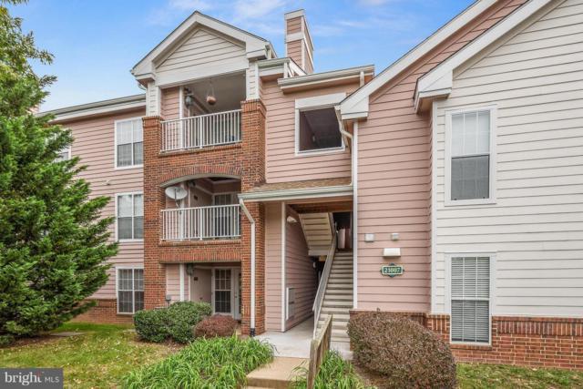 21007 Timber Ridge Terrace #101, ASHBURN, VA 20147 (#VALO100218) :: Charis Realty Group
