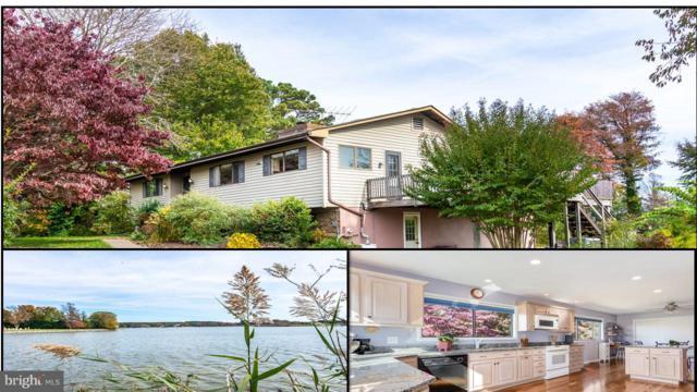 411 Beachside Drive, STEVENSVILLE, MD 21666 (#MDQA100038) :: The Riffle Group of Keller Williams Select Realtors