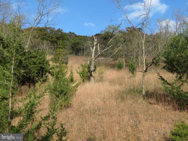 42 Deerfield Highlands, PURGITSVILLE, WV 26852 (#WVHS100014) :: ExecuHome Realty