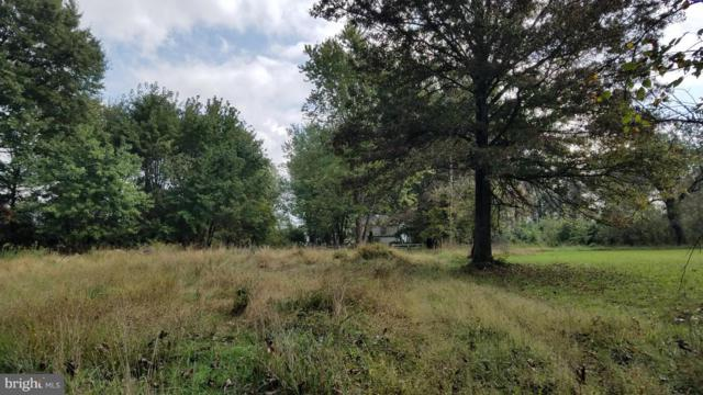 22552 Sam Fred Road, MIDDLEBURG, VA 20117 (#VALO100350) :: LoCoMusings