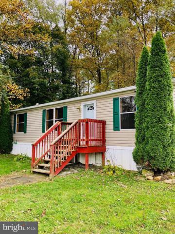 779 Dogwood Lane, GAP, PA 17527 (#PALA101200) :: The Joy Daniels Real Estate Group