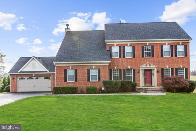 9811 Ritchie Court, IJAMSVILLE, MD 21754 (#MDFR100266) :: RE/MAX Plus