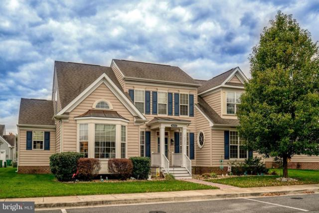 16253 John Rowland Trail, MILTON, DE 19968 (#DESU103192) :: The Windrow Group