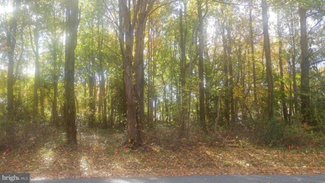 Lot 26 Oregon Road, STEVENSVILLE, MD 21666 (#MDQA100058) :: The Miller Team