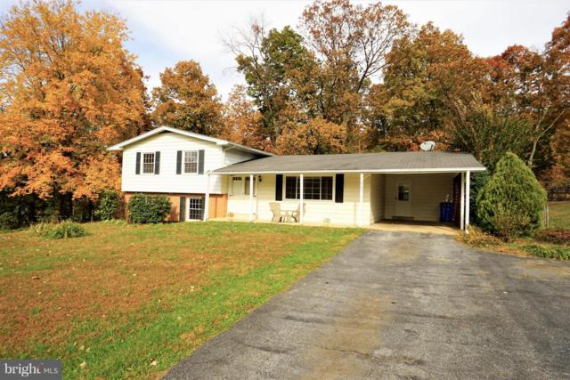 11802 Wendy Court, MONROVIA, MD 21770 (#MDFR100338) :: Jim Bass Group of Real Estate Teams, LLC