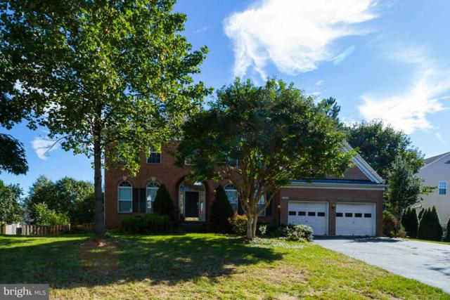21428 Cliff Haven Court, STERLING, VA 20164 (#VALO100640) :: The Withrow Group at Long & Foster