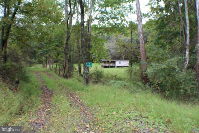 17 ACS Waterash Road, DORCAS, WV 26847 (#WVGT100008) :: Great Falls Great Homes