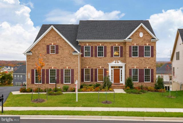 26595 Vanderview Place, CHANTILLY, VA 20152 (#VALO100660) :: Growing Home Real Estate