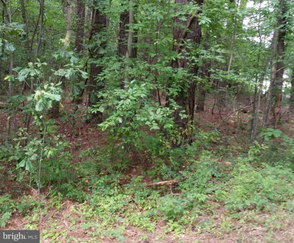Buck Rub Lot #2 Road, TRAPPE, MD 21673 (#MDTA100096) :: Great Falls Great Homes