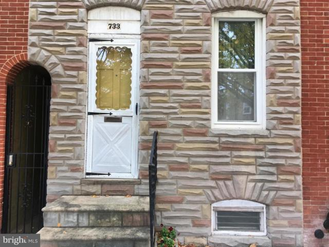 733 S Luzerne Avenue, BALTIMORE, MD 21224 (#MDBA101208) :: Keller Williams Pat Hiban Real Estate Group
