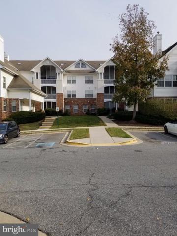 6512 Lake Park Drive 2I, GREENBELT, MD 20770 (#MDPG101244) :: Shamrock Realty Group, Inc