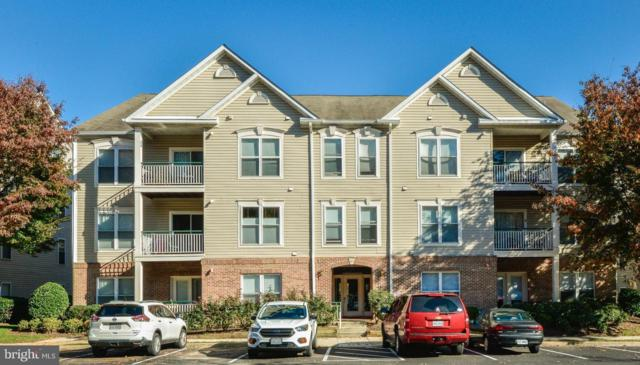 6513 Grange Lane #303, ALEXANDRIA, VA 22315 (#VAFX102290) :: RE/MAX Executives