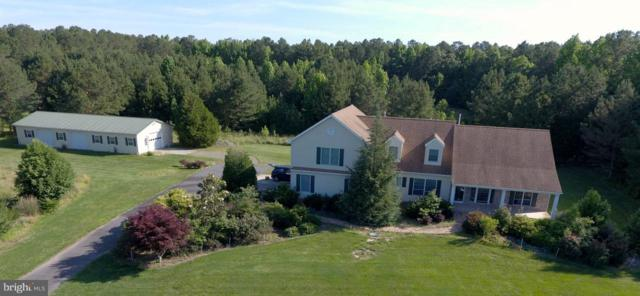 27750 Goldsborough Neck Road, EASTON, MD 21601 (#MDTA100108) :: Coldwell Banker Chesapeake Real Estate Company