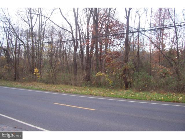 333 Lambertville Hopewell Road, HOPEWELL, NJ 08530 (#NJME100492) :: Daunno Realty Services, LLC