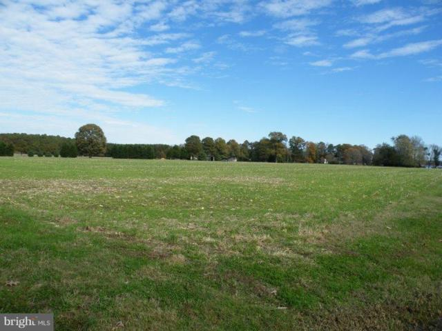 6021 Hopkins Neck Road, EASTON, MD 21601 (#MDTA100120) :: Coldwell Banker Chesapeake Real Estate Company