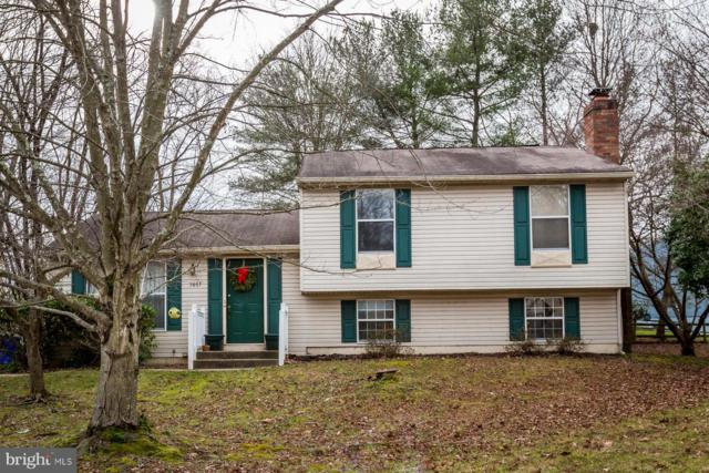 7851 Milkshed Place, ELKRIDGE, MD 21075 (#MDHW100494) :: Blue Key Real Estate Sales Team