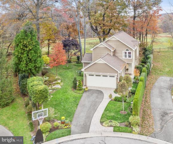 10094 Heron Court, NEW MARKET, MD 21774 (#MDFR100572) :: Jim Bass Group of Real Estate Teams, LLC