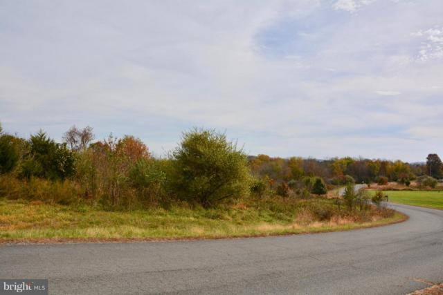 11584 Mica Place, LOVETTSVILLE, VA 20180 (#VALO101020) :: ExecuHome Realty
