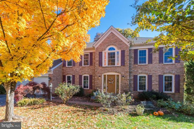 266 Terrie Drive, STERLING, VA 20165 (#VALO101086) :: Growing Home Real Estate