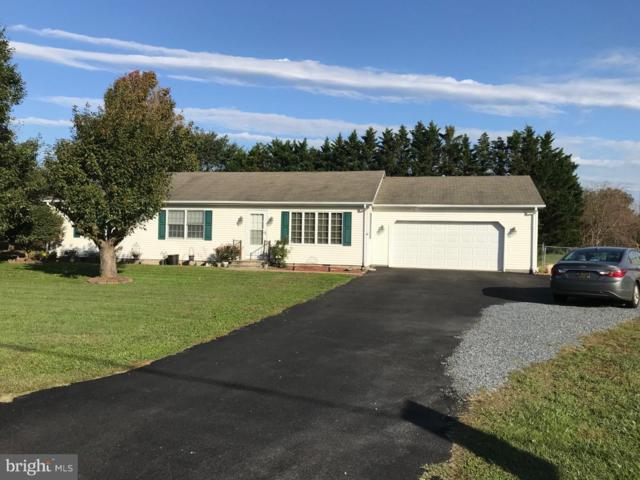 2341 Andrews Lake Road, FELTON, DE 19943 (#DEKT103416) :: REMAX Horizons