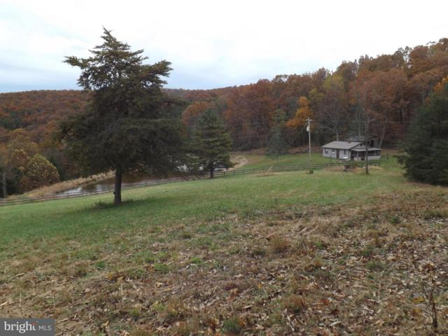 1954 Roy Hyre Hollow Road, PETERSBURG, WV 26847 (#WVGT100014) :: Hill Crest Realty