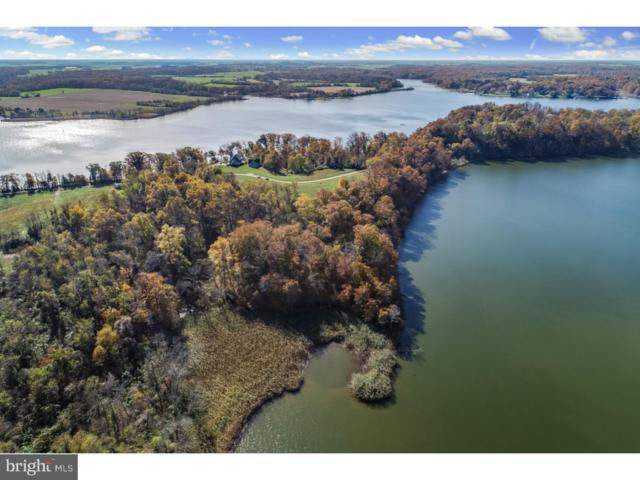 Lot 5 Knights Island Road, EARLEVILLE, MD 21919 (#MDCC100484) :: ExecuHome Realty