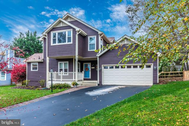 10095 Heron Court, NEW MARKET, MD 21774 (#MDFR100660) :: RE/MAX Plus