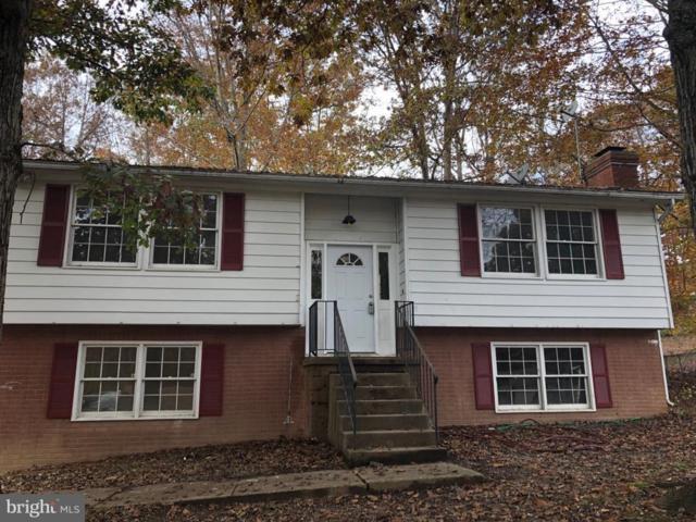 10905 Antelope Trail, FREDERICKSBURG, VA 22407 (#VAFB100066) :: Keller Williams Pat Hiban Real Estate Group
