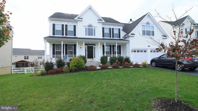 17336 Tedler Circle, ROUND HILL, VA 20141 (#VALO101154) :: TVRG Homes