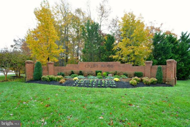 11625 Crest Maple Drive, WOODBRIDGE, VA 22192 (#VAPW101174) :: RE/MAX Gateway
