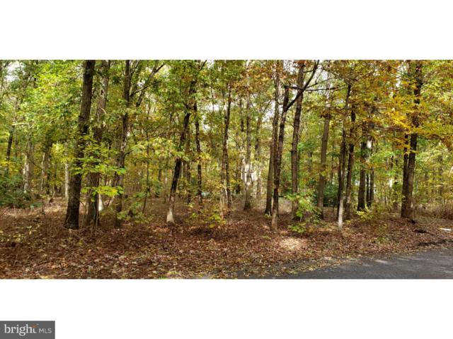 lot8703 Clark Avenue, FRANKLINVILLE, NJ 08322 (#NJGL101278) :: Daunno Realty Services, LLC