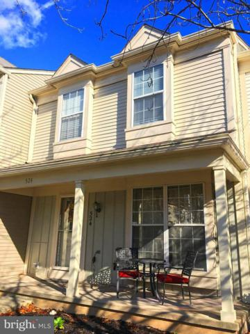 524 Currant Terrace NE, LEESBURG, VA 20176 (#VALO101212) :: Growing Home Real Estate