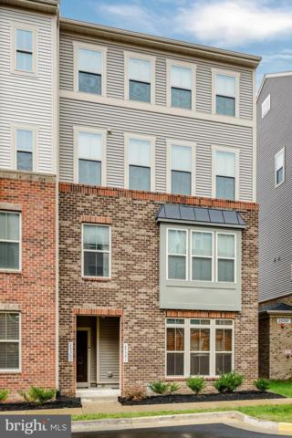 25303 Gray Poplar Terrace, ALDIE, VA 20105 (#VALO101228) :: RE/MAX Gateway