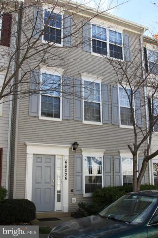 46025 Knight Terrace, STERLING, VA 20166 (#VALO101300) :: Growing Home Real Estate